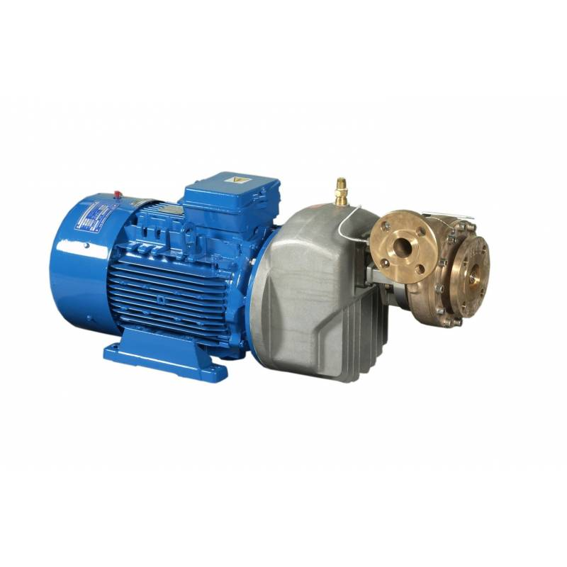 Centrifugal cryogenic pumps CBS