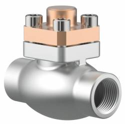 Combined cryogenic check valves