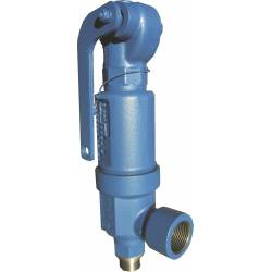 Safety valves type 06310