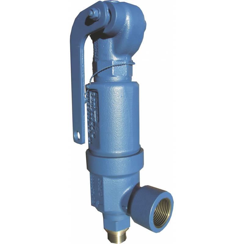 Safety valves type 06310