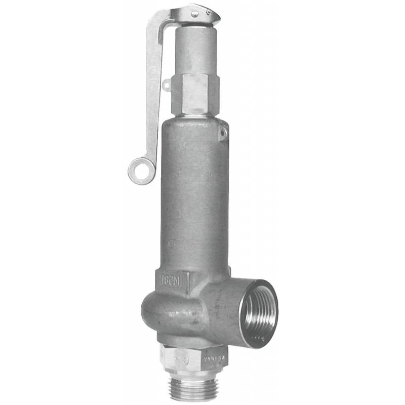Safety valves type 06317