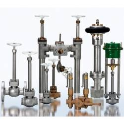 Cryogenic globe and safety valves